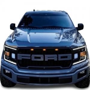 Ford F150 Raptor Grille